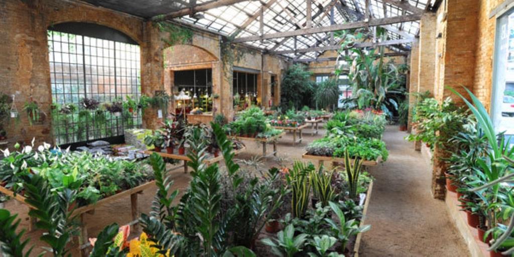 Hivernacle centre de jardineria en barcelona parque for Centre de jardin